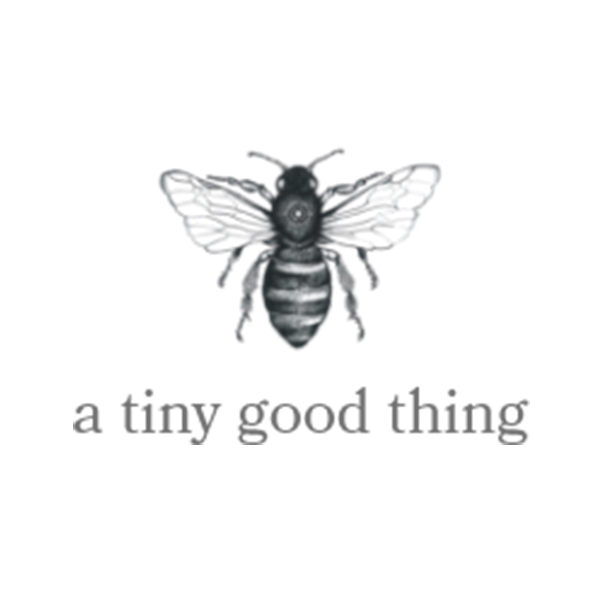 a-tiny-good-thing-transcending-creative-client-square